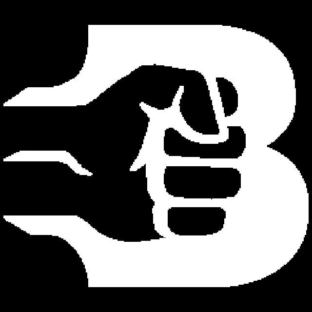 cropped-Logo-B-BILA-bez-pozadi